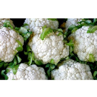 Early Cauliflower